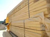 KD European Oak lumber
