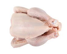 CHEAP HIGH QUALITY HALAL FROZEN WHOLE CHICKEN AND CUTS READY FOR EXPORT