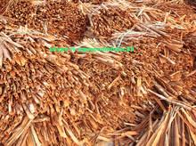 Newest Crop 2015 ,Cassia and Cinnamon Split, broken,pressed whole, cigarette
