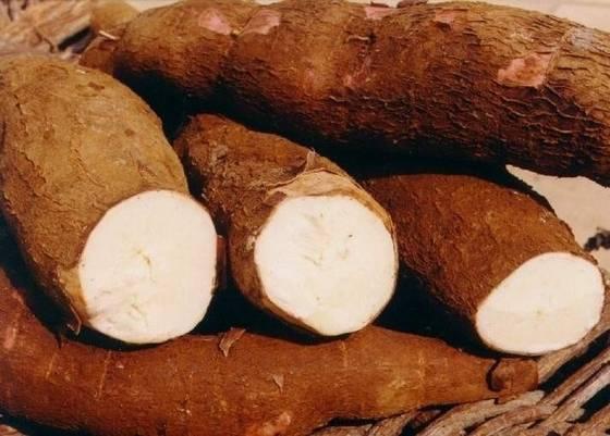 Vietnam Tapioca starch/Cassava starch flour