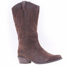 Women's western boot with a pointy toe and low heel