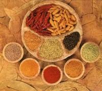 Organic Certified Garam Masala For bulk Exporters