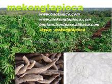 Mekong Tapioca - good tapioca starch from Vietnam