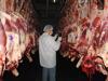 Brazilian Halal Beef Frozen Meat,Boneless Beef Meat