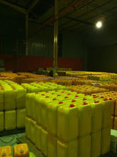 RBD Palm Olein CP10 in Plastic Jerrycans