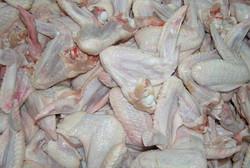 Halal Non Halal Fresh Frozen Chicken Wings