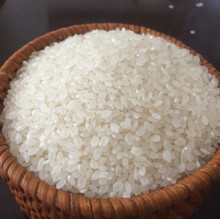 HOT SALES !!!! CHEAPEST VIETNAM ROUND RICE/ JAPONICA RICE, 5% BROKEN, SORTEXED, HIGH QUALITY.