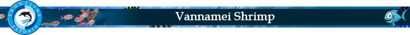 Vannamei Shrimp title.jpg