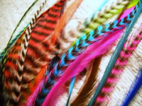 Pink Grizzly Rooster Feathers Long Feathers for Hair Feather Extensions
