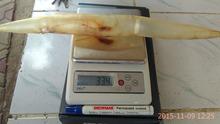 Natural Dried Eel Fish Maw