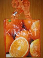 Vietnam PP Woven Bag, Woven Bag in Vietnam
