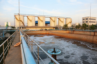 Sewage Odor Control Product