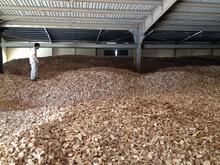 Tapioca/ Cassava/ Manioc Chips and Starch