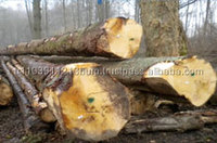 European Spruce logs AND Pine and Spruce logs