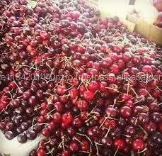 fresh cherries fruits for sale