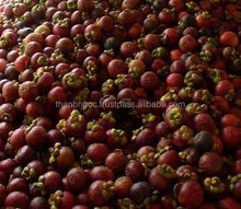 Supply Fresh Mangosteen Fruit From Vietnam With Best Price and Hight Quality