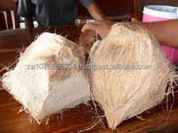 South Africa's best Semi Husk Coconuts,Whole coconuts