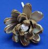 /p-detail/Sola-flor-400002017379.html