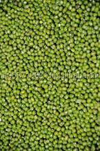 Mung Beans Green Beans From Thailand