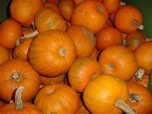 Fresh Pumpkins From Thailand