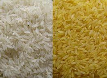 Ponni Boiled Rice Best & High Quality