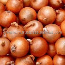 onion garlic fruits vegetable