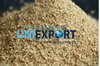 Vietnam corn cob for export