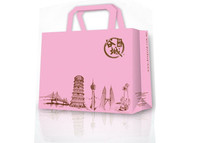 Glossy printed flat ribbon handle retail shopping paper bag