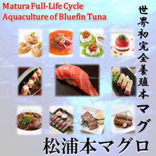No. 1 popular's Matsuura bluefin tuna at wholesale fresh fish.