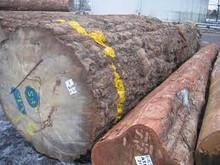 Exotic Tropical wood logs, all hardwood