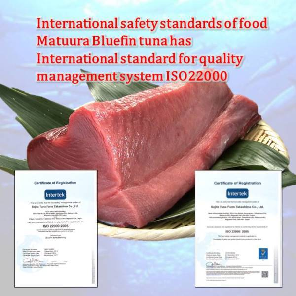 Matsuura Bluefin Tuna Is Not The Normal Canned Food. If ...