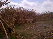 Rattan Poles and Furnitures