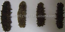 Well Dried curry fish Sea Cucumber skype ID: phil.lennon7