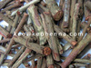 Best Quality Manjistha Powder Exporter