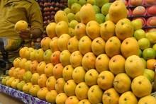 Fresh kesar mango Green