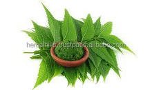 Neem Leaf Powder For Powerful Natural Acne Treatment 100 gms