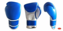 Boxing Gloves / Boxing Gear / Boxing Equipment