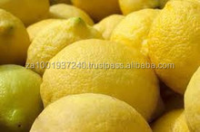 Fresh Lemon, Best Quality