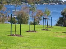 Fibreglass composite tree stake
