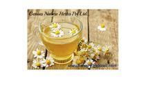 High grade chamomile tea (09022090) manufacturers