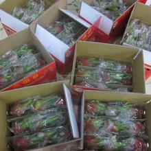 Fresh Dragon Fruit Sweet