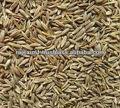 indio semillas de comino con precio