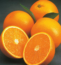 Naval Fresh y Valencia naranjas Naval y Valencia naranjas