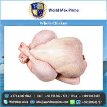 Best Quality Well Cleaned Brazilian Whole Chicken Suppliers Worldwide