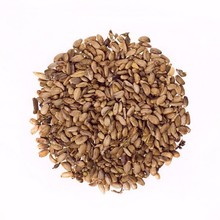 High quality Milk Thistle Seeds from Ukraine (Silybum marianum)