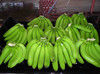 High grade Indian fresh banana