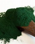 Premium Quality Spirulina Powder for export