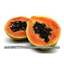 Fresh Papaya GRADE a FOR SALE HOT SALES