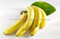 H_100% natural good health cheapest price wholesale fresh banana