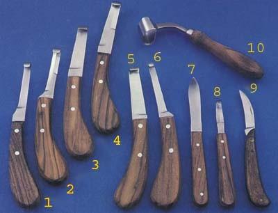 Animaux Vétérinaires Instruments Cheval Pinces 14 pouce Hoof Nippers Maréchal-Ferrant Pinces